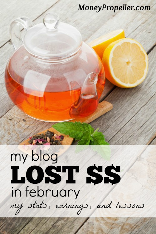 The internet has a lot of income potential, but it's not all roses. Here are my blog earnings and stats for the month of February, 2015.