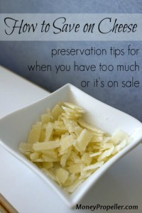 How to Save on Cheese - How to Preserve and Freeze Cheese so you can take advantage of major savings!