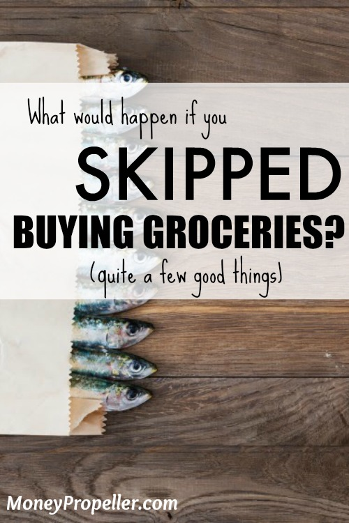 What would happen if you SKIPPED buying groceries? Find out what happened to me!